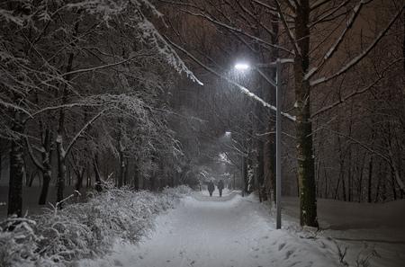 Двое и снегопад